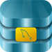 MySQL Mobile Database Client